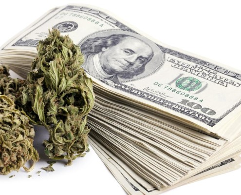 money that a cannabis investor brings to the table